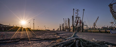 Abendstimmung am Kutterhafen (Roger Armutat) Tags: niedersachsen cuxhaven dorum krabbenkutter sonnenuntergang germany sonnenstern tau natur