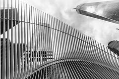 Getting Swallowed In The Belly Of A Whale (Señor Codo) Tags: oculus manhattan newyorkcity newyork santiagocalatrava nyc blackandwhite daytime partlycloudy