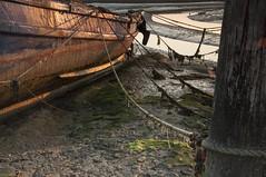 Essex Barling Hall Creek (daveknight1946) Tags: essex barlinghallcreek barling fishingboat lowtide seaweed sun ropes greatphotographers