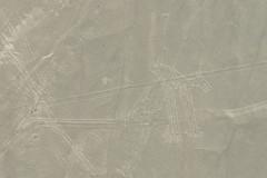 dog / perro lineas de Nazca Peru (roli_b) Tags: dog perro scharrbilder lineas de nazca nasca peru sobrevuelo überflug aerial view window seat avion aircraft animal travel tourism turismo viajar