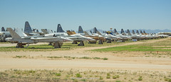 F-18 Line in AMARG Storage (Mark_Aviation) Tags: f18 line amarg storage fa18 f18a hornet us navy aggressor blue angels pima air space museum tucson arizona davis monthan force base amarc military jet aircraft airplane boneyard