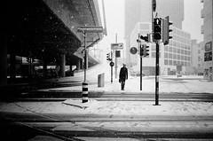 remember the cold? (gato-gato-gato) Tags: 35mm contax contaxt2 iso400 ilford ls600 noritsu noritsuls600 schweiz strasse street streetphotographer streetphotography streettogs suisse svizzera switzerland t2 zueri zuerich zurigo analog analogphotography believeinfilm film filmisnotdead filmphotography flickr gatogatogato gatogatogatoch homedeveloped pointandshoot streetphoto streetpic tobiasgaulkech wwwgatogatogatoch zürich ch leicamp mp leica manualfocus manuellerfokus manualmode rangefinder messsucher black white schwarz weiss bw blanco negro monochrom monochrome blanc noir strase onthestreets mensch person human pedestrian fussgänger fusgänger passant sviss zwitserland isviçre