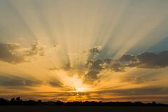 Sunset at Cooling, Kent (craig_prentis) Tags: rays locations england sunset sunray canon5d3 cooling allgenrekeywordtags landscape kent sky clouds eng gb gbr greatbritain uk unitedkingdom