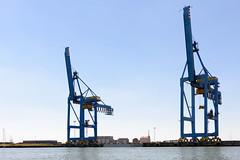 _DSC7997.jpg (wim_tavernier) Tags: northsea westvlaanderen flanders zeebrugge europe belgischekust belgium flandern flandre merdunord noordzee vlaanderen brugge belgië be