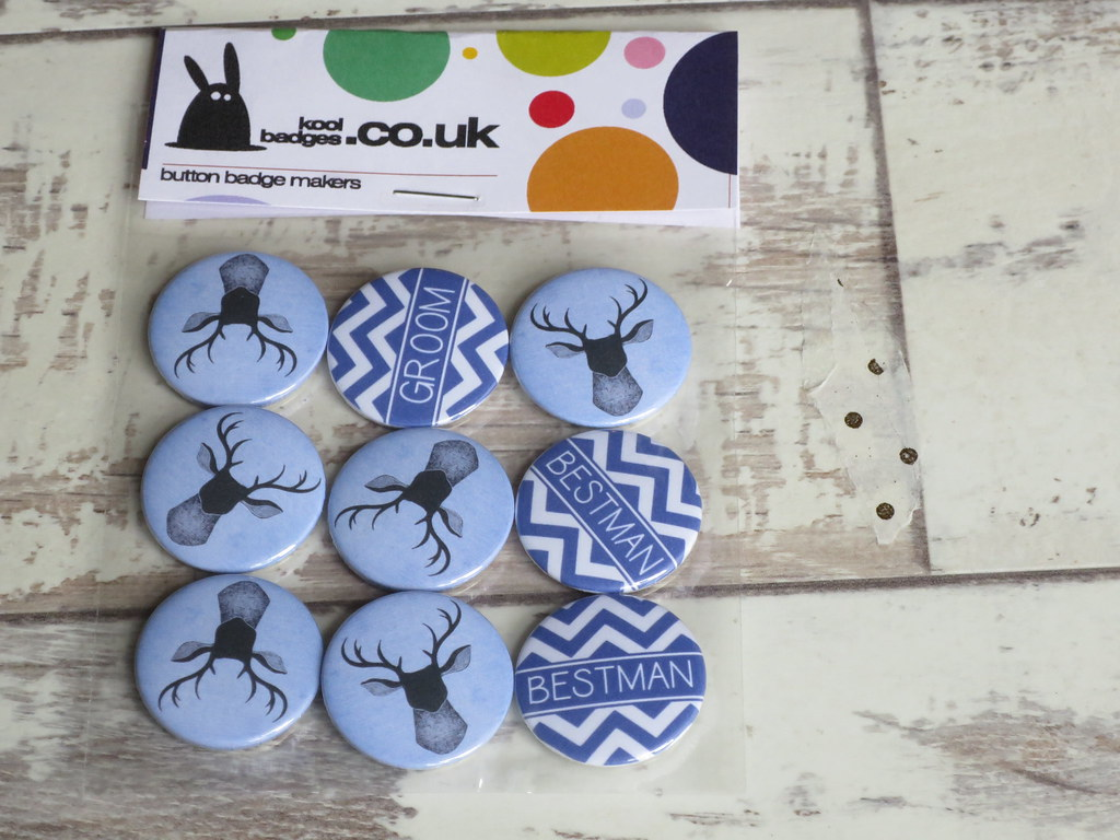 The World's newest photos of pins and promo - Flickr Hive Mind