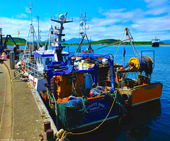 Scotland West Highlands Argyll Oban fishing trawlers docked and in the distance the car ferry Clansman 7 July 2018 by Anne MacKay (Anne MacKay images of interest & wonder) Tags: scotland west highlands argyll oban docks fishing trawlers 7 july 2018 picture by anne mackay