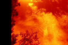 [ - DIANA - ] (ǝlɐǝq ˙M ʍǝɥʇʇɐW) Tags: dianatestrollfilmanalogueredscale diana film redscalefilm dianaf dianatestroll filmrules acelebrationoffilm texas deepinthedarkheartoftexas derhimmelübertexas analog redredredred abstract multiexposure sun lordrayleigh scattering atmospheric attenuation light physics ifeltgravityspull g2v spectral classification clouds convection red doubleexposure gravitywaves