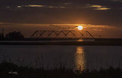 Geese over the bridge (Alec_Hickman) Tags: sunrise morning dawn bridge water sea ocean inlet river geese birds flying sun colors canada