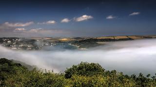 Salcombes Mist