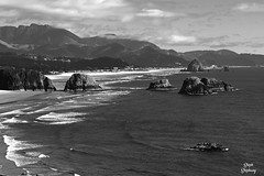 DSC_2249 ~ Ecola Point, Ecola State Park OR B&W (stephanie.ovdiyenko) Tags: ecolapoint ecolastatepark oregon pacificcoast pacificocean pacificnorthwest ocean shoreline rocks beach blackandwhite