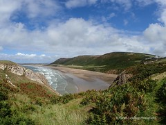 Rhossilli Bay 2018 08 16 #1 (Gareth Lovering Photography 5,000,061) Tags: sunflowers rhossili gower nationaltrustwales nationaltrust swansea outstanding landscape seascape beautiful beach seaside olympus tg5 garethloveringphotography
