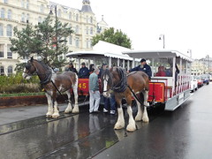 Douglas Bay Horse Tramway: Douglas and Car 45, plus Kewin and Car 36, Villa Marina (28/07/2018) (David Hennessey) Tags: douglas bay horse tramway car 45 36 kewin villa marina