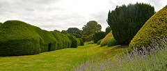 SUDELEY CASTLE GARDENS (chris .p) Tags: sudeley nikon d610 gardens england gloucestershire yew lawn summer 2018 history sudeleycastle uk august