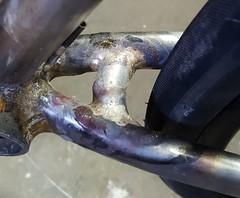 Major Cycles Bruderherz Road+ (picnicker74) Tags: reynolds 853 reynolds853proteam framebuilding rahmenbau bespoked steelframe stahlrahmen