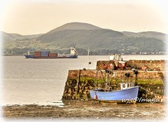 Greers Quey, Carlingford, Co. Louth. (willieguildea) Tags: harbour port quey boat fishingboat ship water river lough carlingfordlough greersquey carlingford louth ireland eire moutain landscape sky shore coast coastal nikon
