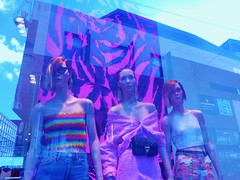 Three in a shop-window (JoséDay) Tags: beautyinashop perfectbeautygroup beauty shopwindow spiegeling weerspiegeling reflections colours coloursonflickr flickraward flickrsun flickrfriends flickrclickx flickrstar panasonicdmctz10 panasonictz10 panasonic thehague denhaag thenetherlands