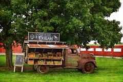 fresh produce (David Sebben) Tags: dodge truck vintage fresh produce iowa venue vegetables fruit