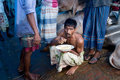A plate of rice (A. adnan) Tags: rice plate food hunger hungry documentary reportage chittagong bangladesh cattlemarket eiduladha festival muslim islam islamicfestival muslimculture documentaryphotography cow cattle