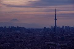 Dusk over Tokyo with Mount Fuji & The SkyTree (Alfie   Japanorama) Tags: mountfuji mountain dusk tokyo japan skytree nikon nikond800e nikkor80200mmf28 cityscape sunset japanese telephoto