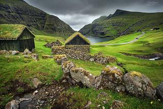 'Cow Rubs' - Saksun, Faroe Islands