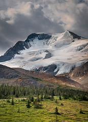 Columbia Glacier Field, Jasper National Park (marvhimmel) Tags: general jaspernationalpark montana flatheadlake canada bristishcolumbia