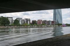 Frankfurt am Main (zug55) Tags: frankfurtammain frankfurt hesse hessen germany deutschland main river fluss