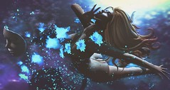Then at a deadly pace it came from outer space (clau.dagger) Tags: eve thefantasygachacarnival enchantment secondlife fantasy scifi cyber art flower stars attachment decor tableauvivant insol catwa maitreya flores