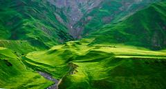 Mountains of the Caucasus (aliffc3) Tags: mountainsofthecaucasus kazbegi georgia nikond750 nikon70200f4 landscape travel tourism green
