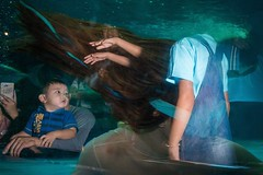 The Aquarium 3 Thailand, August 2018  Please tell me in the comment how do you feel about this one :) (Thanakorn Treratanaboot) Tags: aquarium streetphotography street thailand marine horror ghost hands moment inexplore