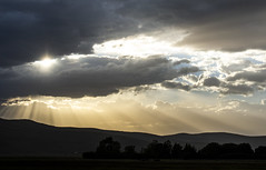 Sky Break (JasonCameron) Tags: storm weather cloud sky rain sunset light shine break silhouette tree ground
