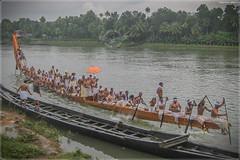 IMG_0607 (|| Nellickal Palliyodam ||) Tags: nellickal palliyodam aranmula snake boat race jalamela pathanamthitta kannadi tradition kerala