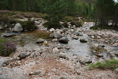 Ford Crossing (steve_whitmarsh) Tags: aberdeenshire scotland scottishhighlands highlands mountain hills cairngorms path water burn stream rocks trees landscape topic