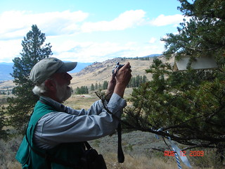 2009. Michael Johnson taking a picture of a Douglas-fir tussock moth trap.