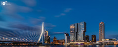 [E X P L O R E] Rotterdam Pano III (Robert Stienstra Photography) Tags: rotterdam rotterdamcityscape rotterdamskyline cityscape cityscapes bigcity bluehour bluehourphotography nightscapes nightshots nightlife nightscape longexposure longexposurephotography riverscape bridge bridges kopvanzuid nikond7100 bigstopper lee tokina1224mm pano panorama panoramic panoramas
