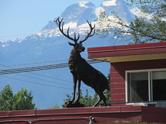 It ain't Christmas and you ain't Blitzen (jamica1) Tags: stag hind deer statue roof rooftop revelstoke bc british columbia canada
