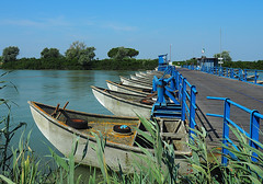 Ponte di barche - Boats bridge (Ola55) Tags: ola55 italy emiliaromagna ponte bridge barche boats po fiume river blu blue acqua water gorino ferrara italians