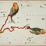 Sidney Hall's (1831) astronomical chart illustration of the Pisces. Original from Library of Congress. Digitally enhanced by rawpixel. thumbnail