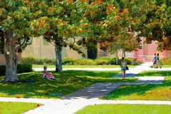 Summer In The City (Christina's World Off and On) Tags: landscape neighborhood nostalgia painterly oilpainting impressionism impressionistic light trees streetphotography artistic people green grass women walking serene seasons sandiego california usa southerncalifornia leadingline digitalart digitalpainting pastels exotic frame girl grasses afternoon leaves august outdoors plants scenic street textures unitedstates vegetation view woman youngadult city park art