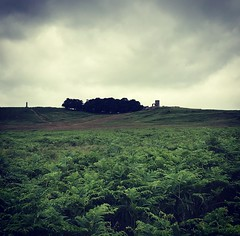 Bradgate Park Leicestershire (boloveselvis) Tags: oldjohn old john tower ruins history leicestershire