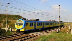 EN57-1687, Szymiszów, 20.06.2018 (Marcin Kapica ...) Tags: pkp railway rail bahn kibel en57