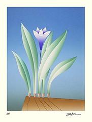 Unknown flower (Japanese Flower and Bird Art) Tags: flower yoji kuri modern screenprint print japan japanese art readercollection