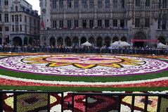 Brussels Flower Carpet 2018 (fabonthemoon) Tags: brusselsflowercarpet2018 fleur flower flowercarpet bloem bloementapijt tapisdefleurs brussels bruxelles brussel belgique belgium belgië