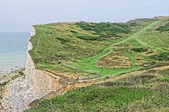 Cliff Paths (Geoff Henson) Tags: path footpath pathway grass bushes sea water ocean sky beach rocks cliff steps stairway railings people green