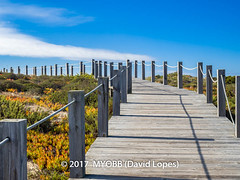 Portugal 2017-9041874 (myobb (David Lopes)) Tags: 2017 allrightsreserved europe nazare portugal absence bluesky boardwalk copyrighted diminishingperspective idylic infinity landscape nature nopeople outdoor plant rope scenicnature seascape sky tourism touristattraction tranquilscene tranquilty traveldestination vacation vanishingpoint ©2017davidlopes