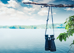 ~Adventure is worthwhile in itself (Fire Fighter's Wife) Tags: adventure travel tree trees leaves lake sky binoculars cool cooltones olympus 1250mmf3563 1250mm water waterscape dreamy colors clouds hss happyslidersunday sunday branch grain