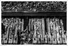 Play Me My Song 172/365 (John Penberthy LRPS) Tags: instrument d750 nikon piano walledgarden mono flowersandplants somerset johnpenberthy 3652018 365the2018edition day172365 monochrome dilapidated old 21jun18 rust
