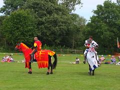 DSCF3842 (SierPinskiA) Tags: ruffordabbeycountrypark rufford knightsofnottingham fujixs1 jousting medieval horse knights goldeneagle falcon