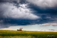 L59A4009_HDR-2.jpg (kendra kpk) Tags: wheat dakotawindsphotocom dakotawindsphotography windrower us grain southdakota hdrefex clouds trippcounty hdr summer abandoned weather grass grayjune 2018 wideopenspaces storm stormcell windmill farm winner blue thunderstorm
