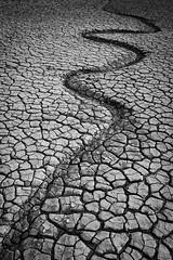 Snake in the mud (Si Bart) Tags: a6300 heswall merseyside moorecameraclub riverdee sigma16mm sony sunset uk birkenhead england unitedkingdom gb