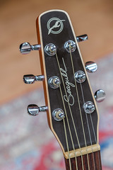 My new hobby (Olivera White) Tags: guitar godin seagull s6 acoustic